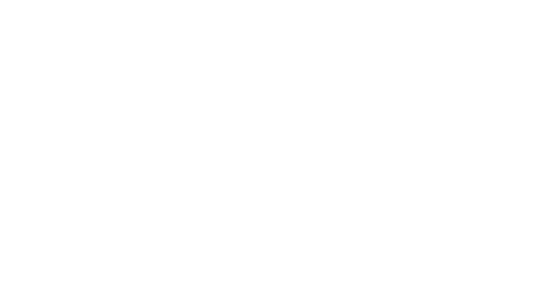 Swedish Law and Informatics Research Institute
